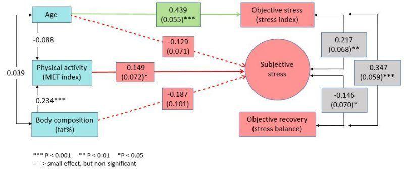 Iän, fyysisen aktiivisuuden ja kehonkoostumuksen yhteydet stressiin ja palautumiseen