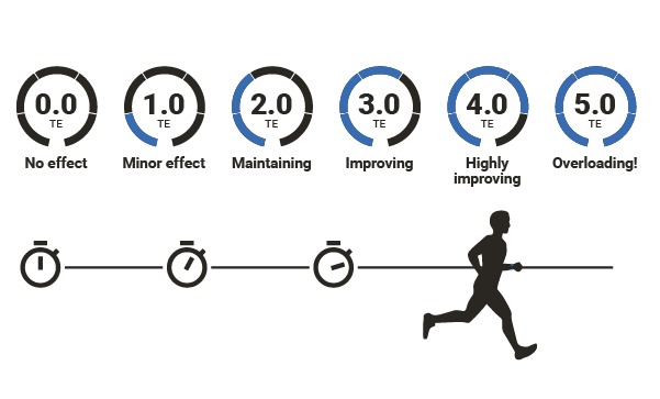 Training Effect predicts how your efforts will impact your VO2max fitness level.