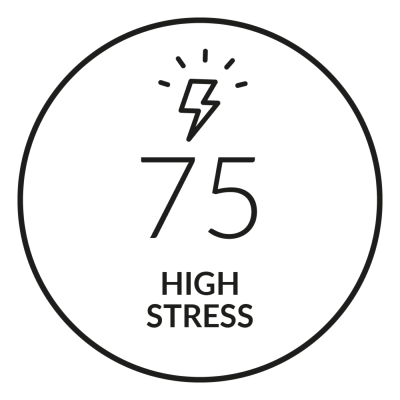 Quick Stress Level Test - Firstbeat Feature