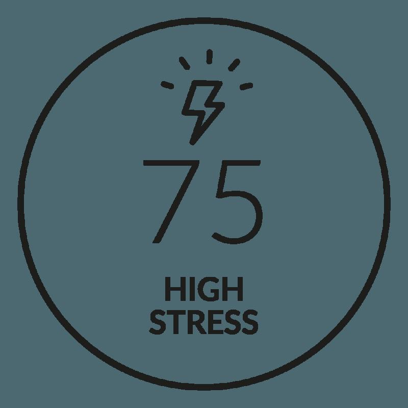 Quick Stress Level Test - Firstbeat Feature