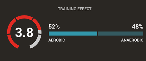 firstbeat sports training effect