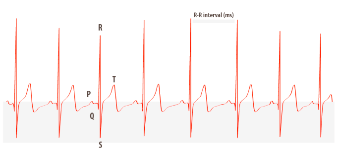 Heart rate variability (HRV) - R-R-interval
