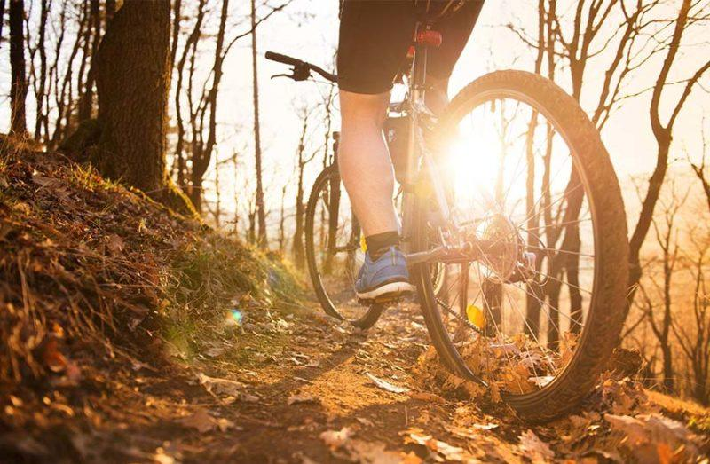 a low intentisy bike ride enhances your recovery