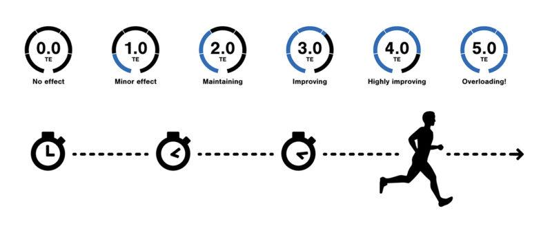 The scale of Aerobic Training Effect