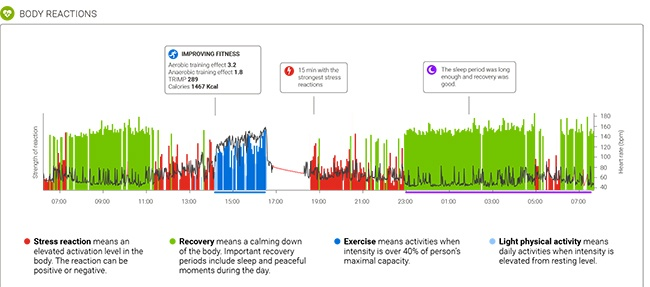 firstbeat lifestyle assessment chart