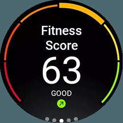 fitness score montblanc summit 2+