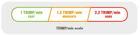 firstbeat sports trimp scale