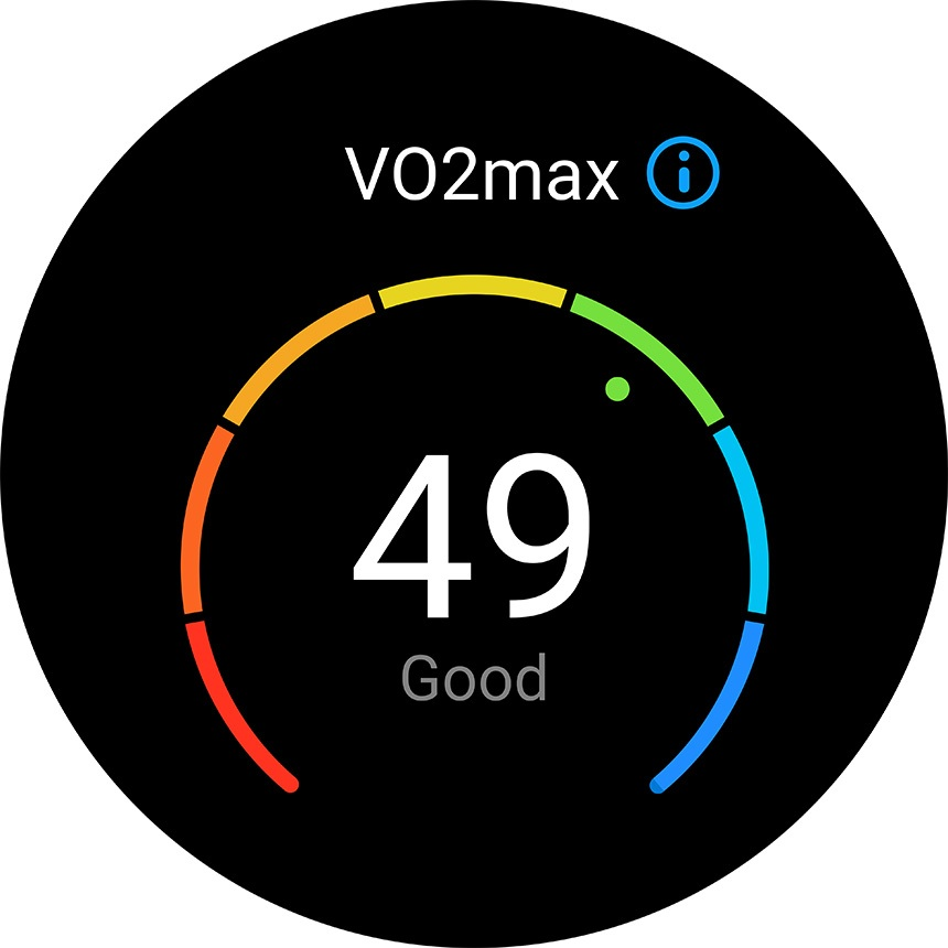 Huawei Watch GT 2 - VO2max