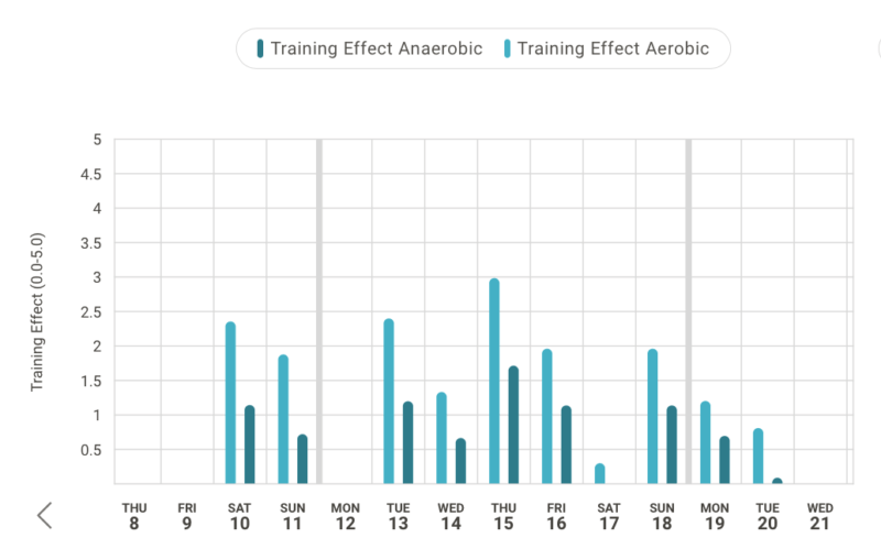 Athletes training effect