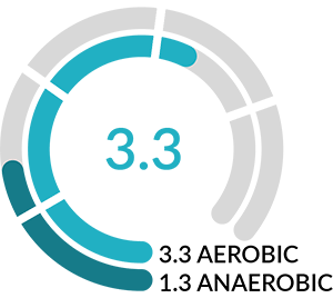 Aerobic and anaerobic Training effect