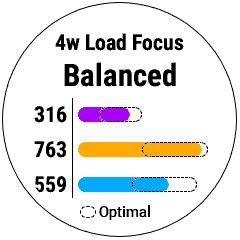 Firstbeat Feature - Training Load Balance