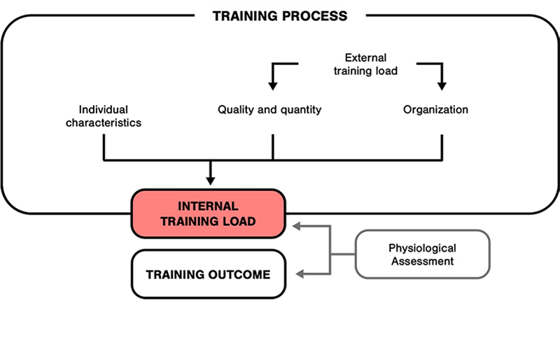 The Training Process involves several elements, including internal and external training load, to produce the Training Outcome.
